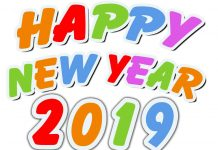 Happy New Year 2019- NEW YEAR 2019 Congratulations