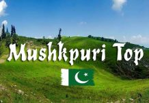 Mushkpuri Top Nathia Gali Hills Abbottabad District KPK