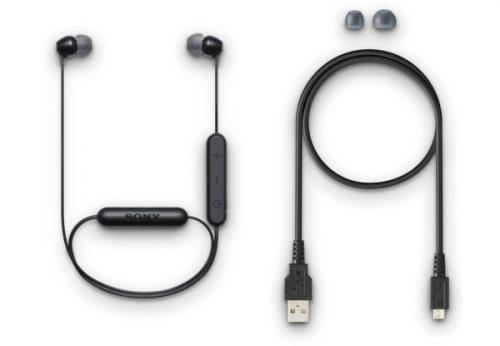 Sony WI-C300 (WIC300B.E)