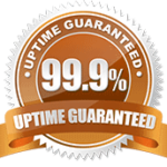 uptime-guarantee Custom Website Designing Development