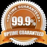 uptime-guarantee Custom Website Designing Development